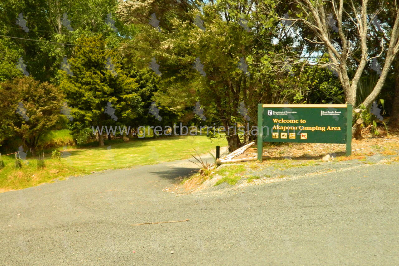 akapoua campground great barrier island 1