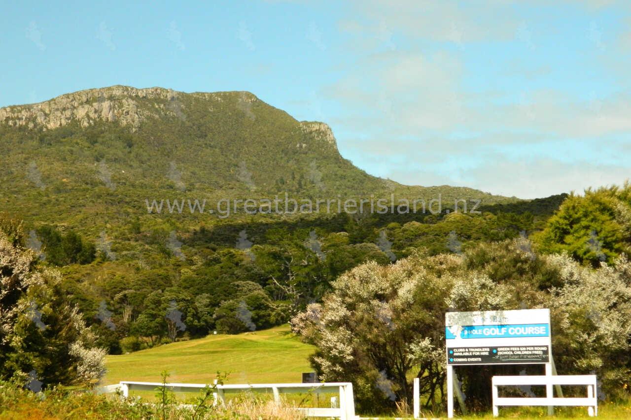 golf club great barrier island