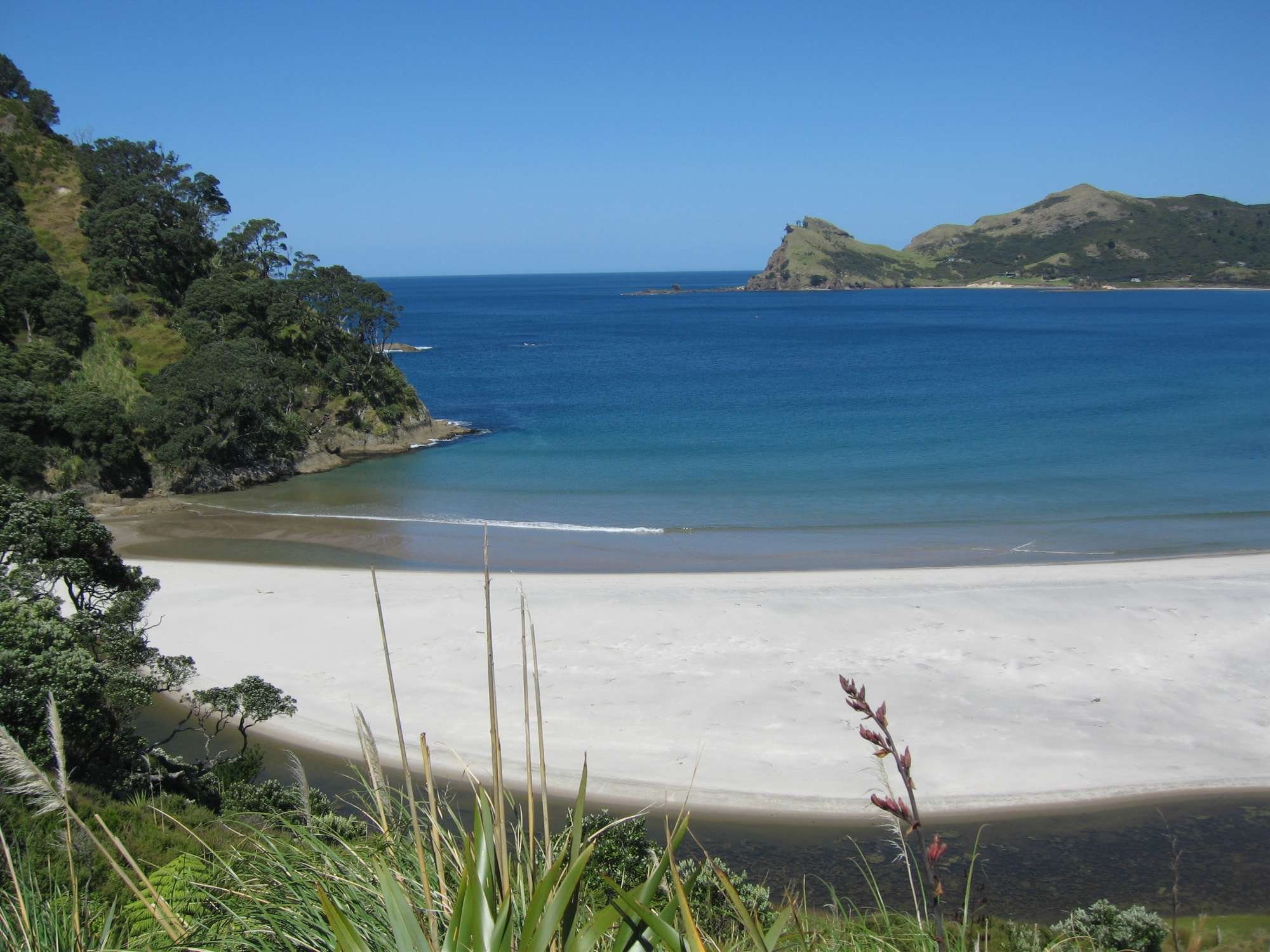 Medlands Beach - Great Barrier Island